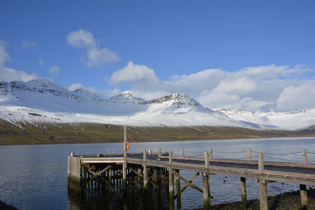 OlloWorld, Island 2016